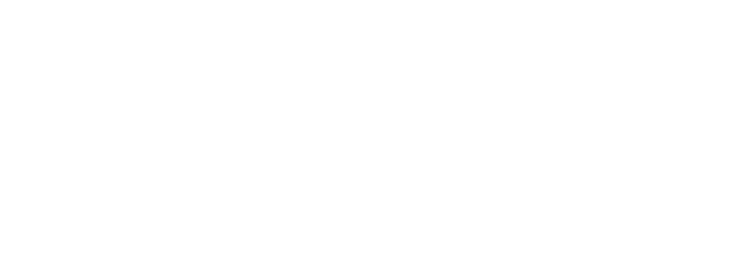 Bruce County Museum logo