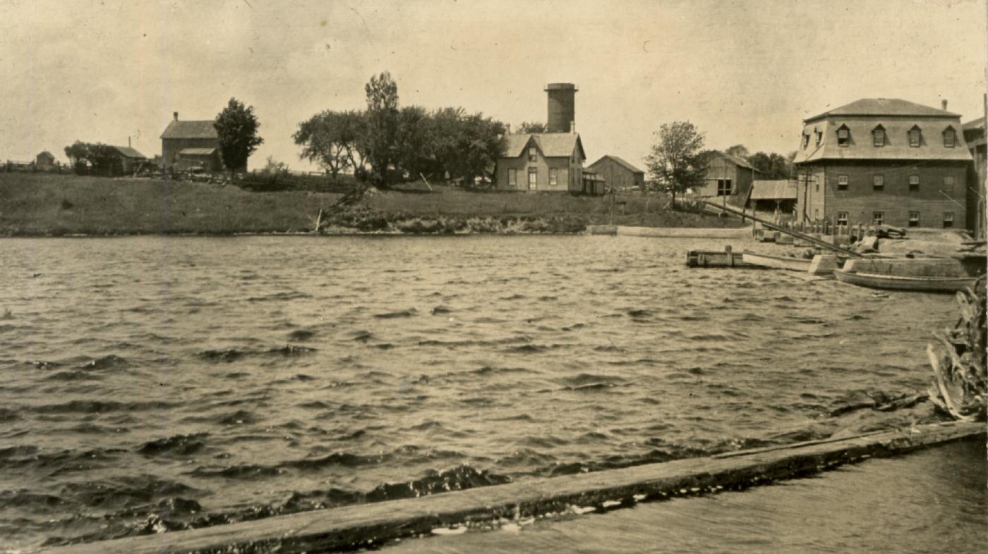 The Pond, Cargill