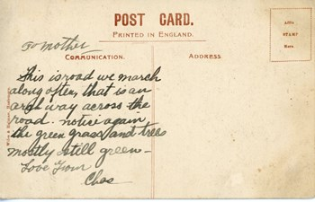 Hollycomb House postcard, back